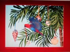 tropiskt julkort